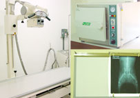 Highly Standard Equipments Included Autoclave Machine