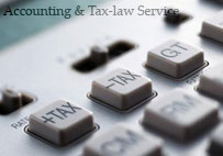 Professional accounting & Tax - law service